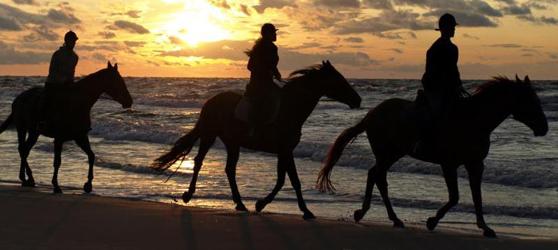 Cayo Coco horseback riding