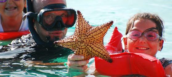 Starfish Cayo Coco